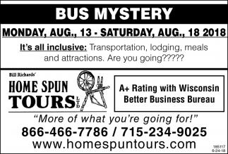 Bus Mistery