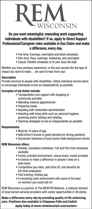Professional/Caregiver Roles