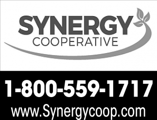 Synergy Cooperative