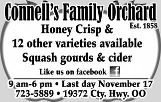Honey Crisp
