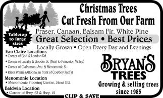 Christmas Trees Cut Fresh from Our Farm